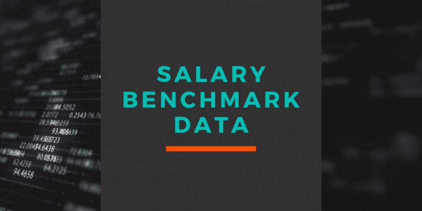 Bespoke Market Salary Service